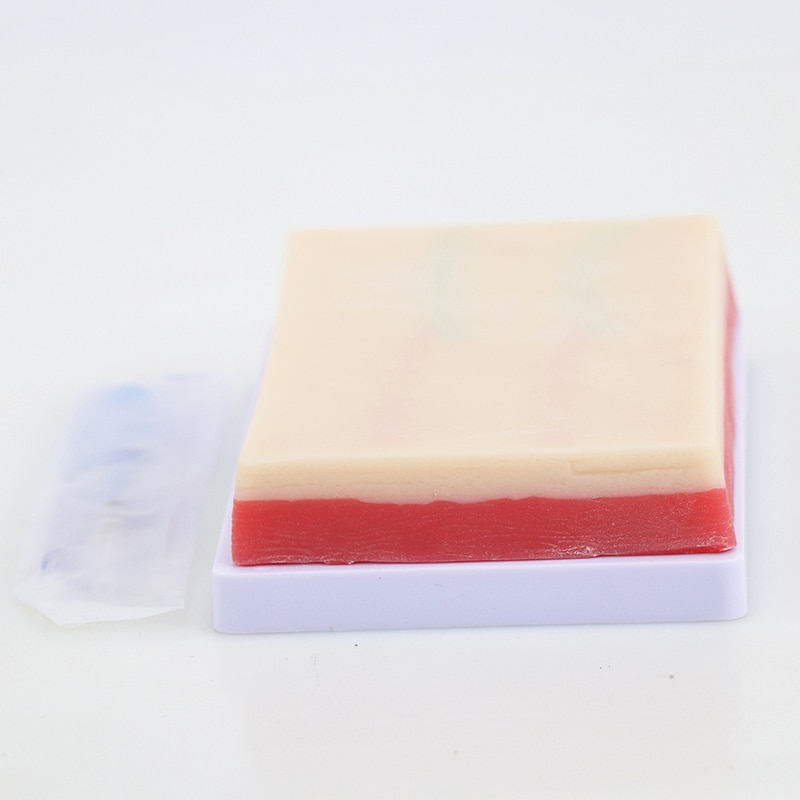 Venipuncture Human Skin Injection Training Model